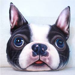 Grand coussin chien 3D boston terrier